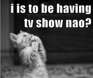 320_I-can-haz-tv-show-nao